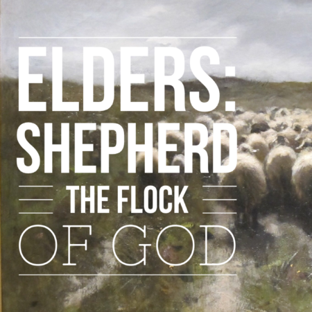 of the flock